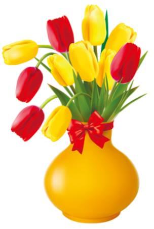 tulipvang