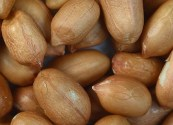 Peanuts_with_skin